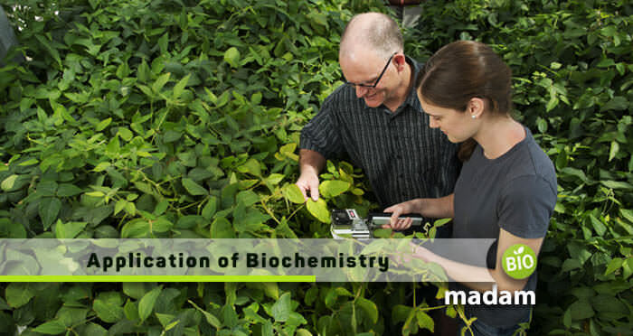 a man and a girl examine plants