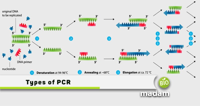 Types-of-PCR