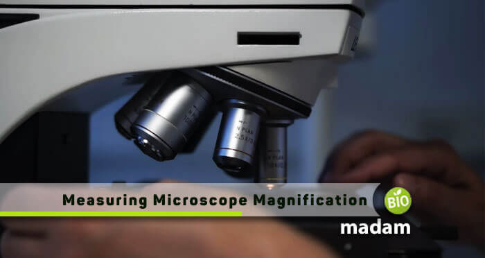 Measuring-Microscope-Magnification