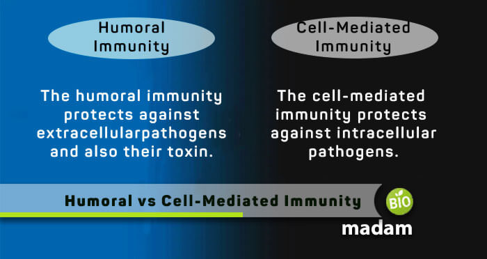 Humoral-and-Cell-Mediated-Immunity